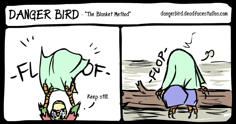 Anyone with birds knows the power of the blanket.