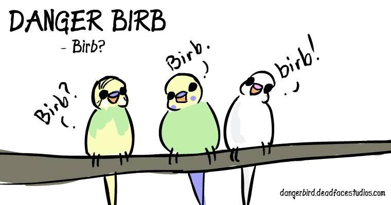 birb birb birb birb birb birb birb birb birb birb birb birb birb birb birb birb birb birb birb birb birb birb birb birb birb birb birb birb birb birb birb birb birb