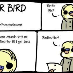 birdiesitting