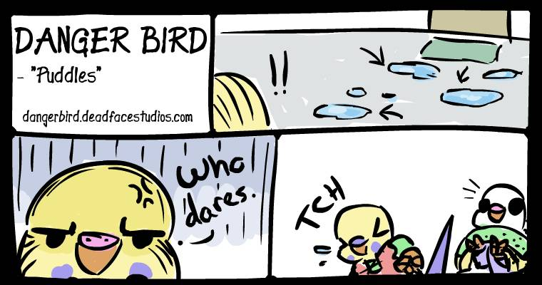 White Bird is either shocked by the sneeze or the sudden disturbance in the force from Boss Bird. Or both.